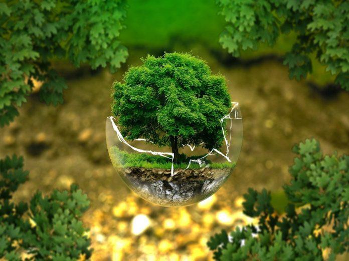 Ekologija (3)