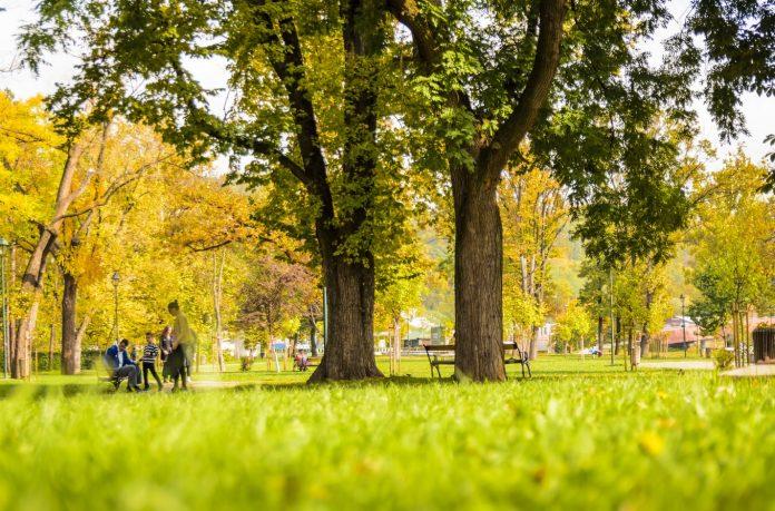 Uređenje parkova u Srbiji