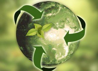 ilustracija ekologije